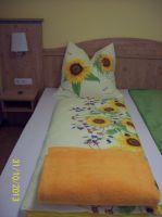 Sonnenblume-schlafen2